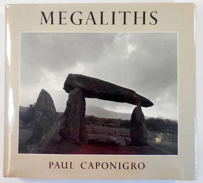 Image for Megaliths