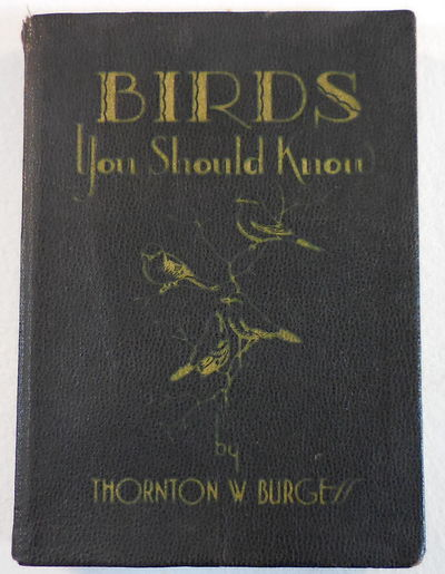 Image for Birds You Should Know