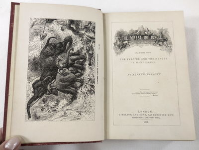 Image for The Forest, The Jungle, and the Praririe; or, Scnes with the Trapper and the Hunter in Many Lands