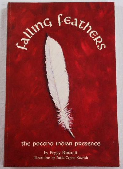 Image for Falling Feather: The Pocono Indian Presence